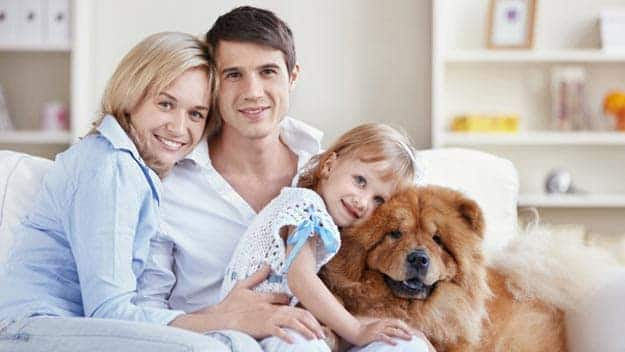 Wills & Trusts dog-young-family Direct Wills Enfield Town